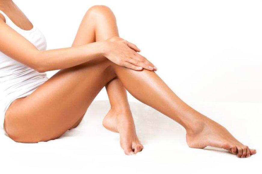 Dailios kojos