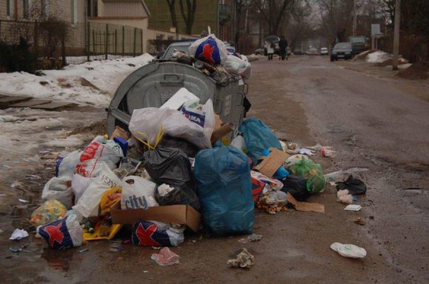 Vilniaus tabore gyvenantys romai ir toliau nemokės už buitinių atliekų išvežimą.