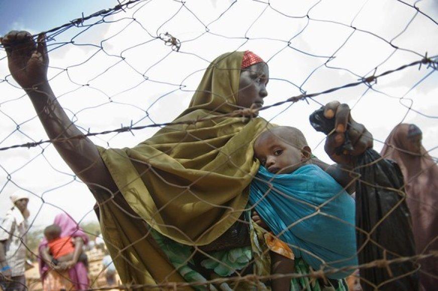 Dadabo pabėgėlių stovykla