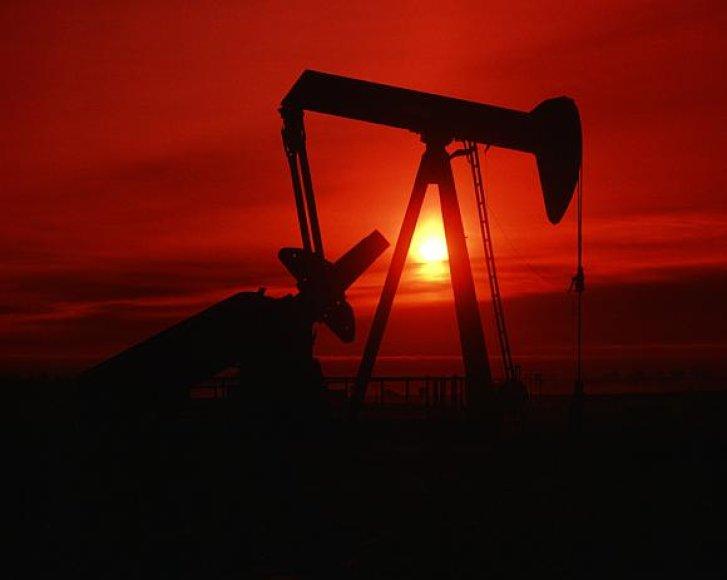 Nors naftos gavyba ir sumažėjo, jos kaina nesulaikomai krenta.