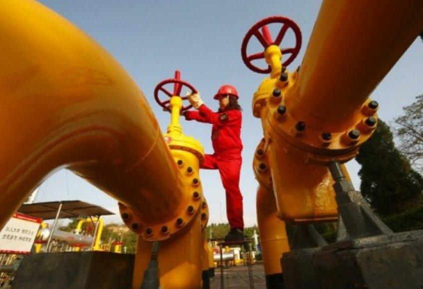 Ukraina yra didžiausia dujų tranzito šalis