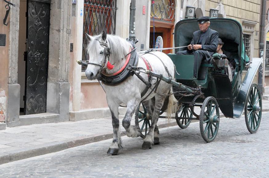 Arklio traukiama karieta