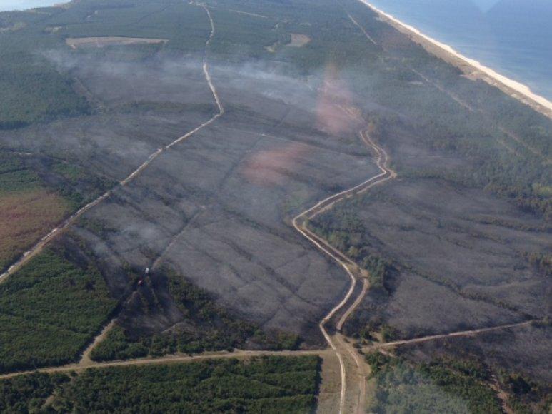Kuršių nerija atsikvėpė – per kelias valandas beveik 70 hektarų pusiasalio miškų nusiaubęs gaisras numalšintas.