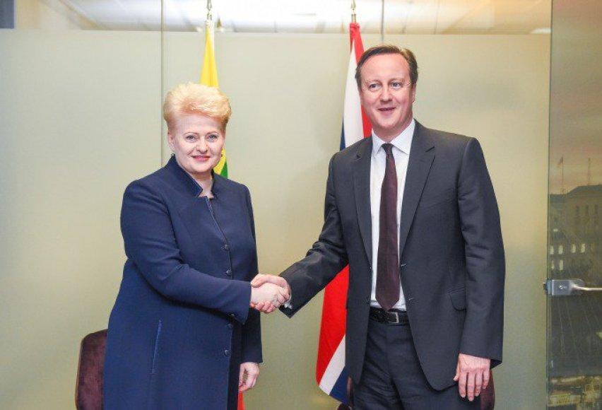 Dalia Grybauskaitė susitiko su britų premjeru Davidu Cameronu