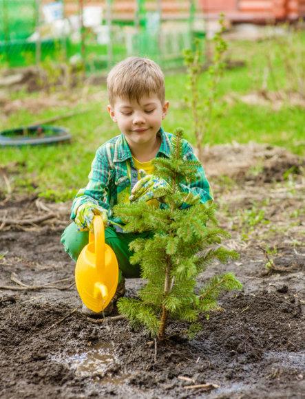 Vaikas sodina augalą (asoc. nuotr.)