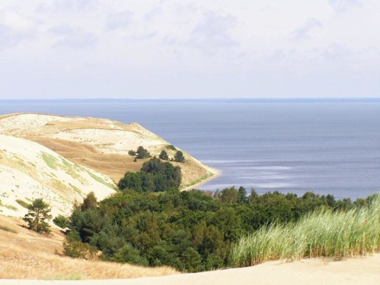 Naglių gamtos rezervatas