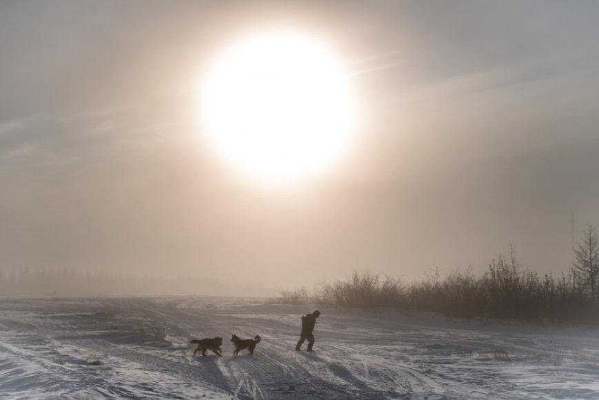 Sibiro saulė