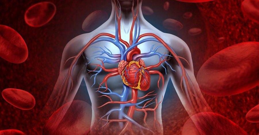 hipertenzijos gydymo pratimai Vorošilovo badavimas dėl hipertenzijos