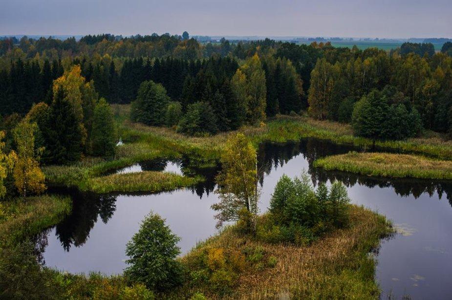 Jurgos Anusauskienės nuotr./Iš bokšto matomi karstiniai ežerėliai