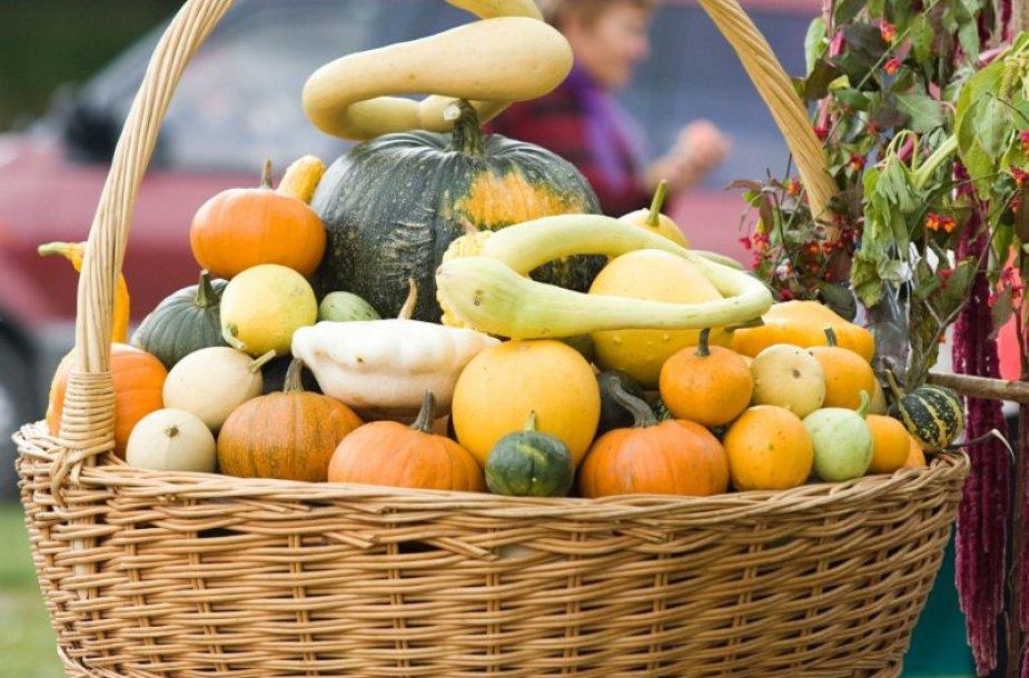 Vilniečiai turės progą įsigyti tiesiai iš sodo ir daržo atkeliavusių rudens gėrybių.