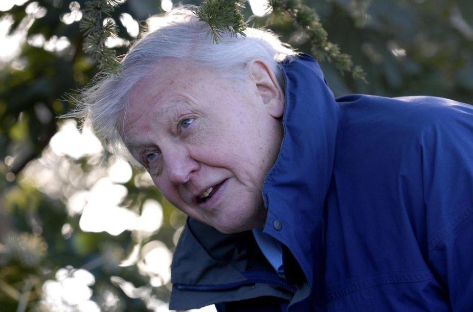 Didžiosios Britanijos dokumentinių filmų apie gamtą kūrėjas seras Davidas Attenborough
