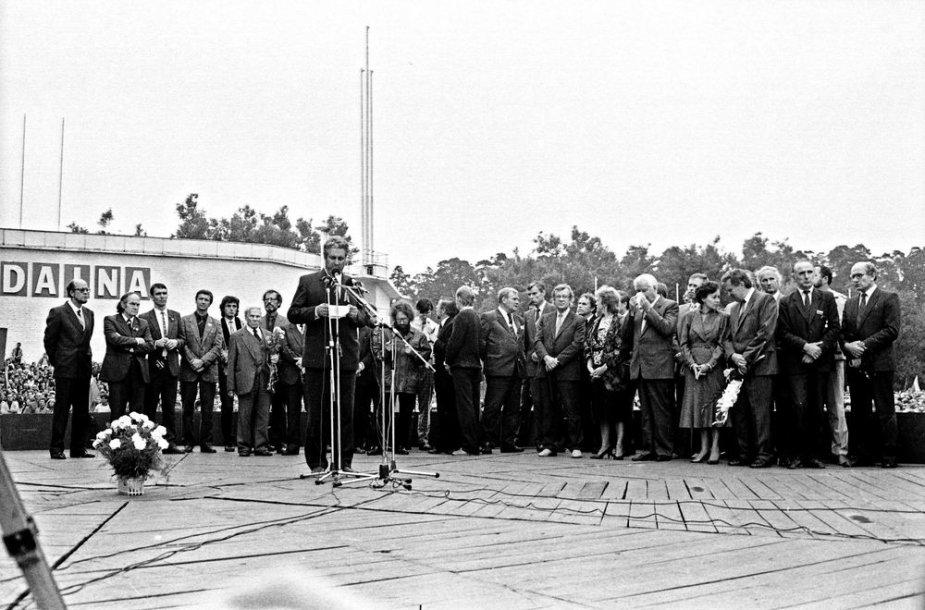1988 m. rugpjūčio 23-oji, Sąjūdžio mitingas Vignio parke