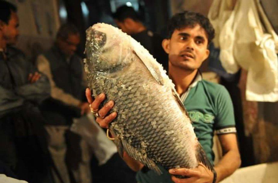 Žuvies pardavėjas ir jo laimikis