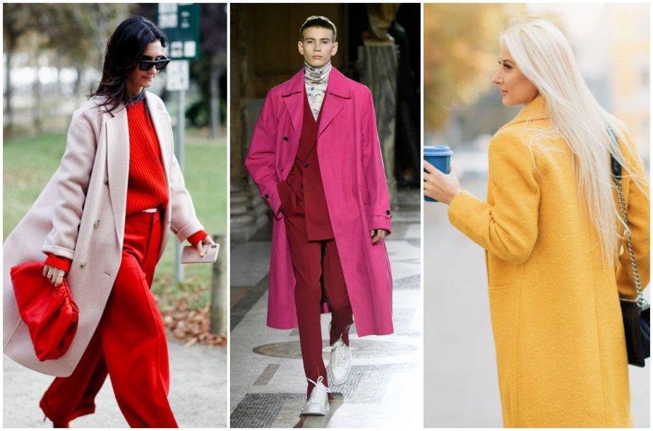Ryškios spalvos aprangoje