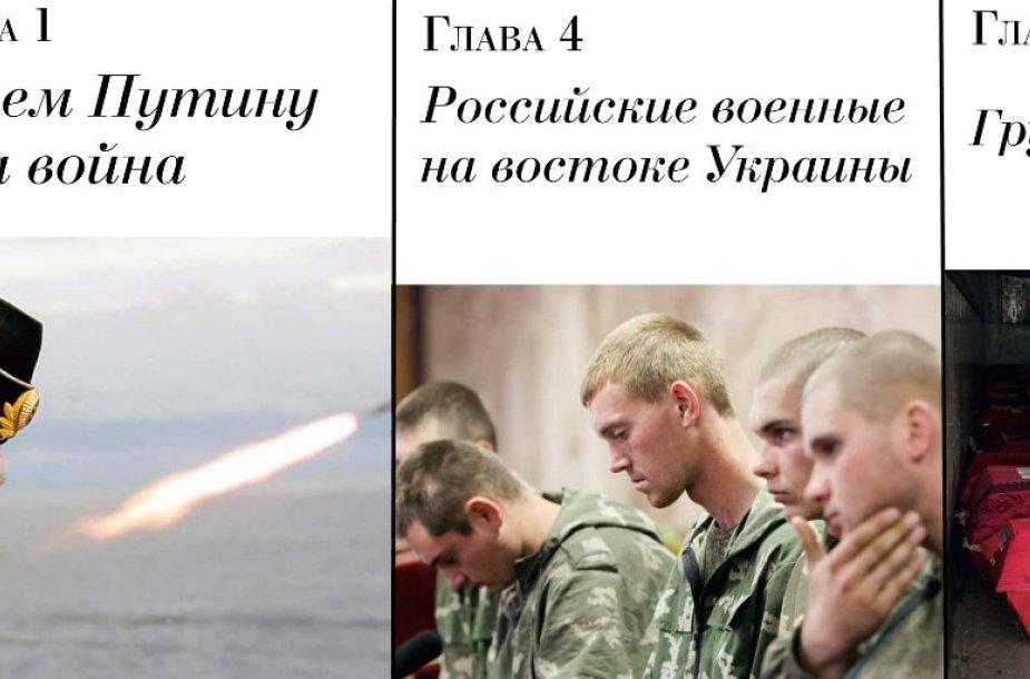 Boriso Nemcovo ataskaita