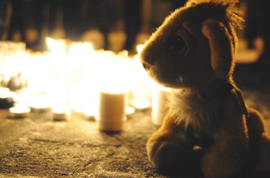 """Pilietinė akcija """"Šilta žvakelė už vaiko gyvybę"""""""