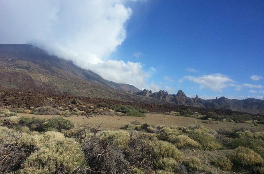 Teidės ugnikalnio peizažas