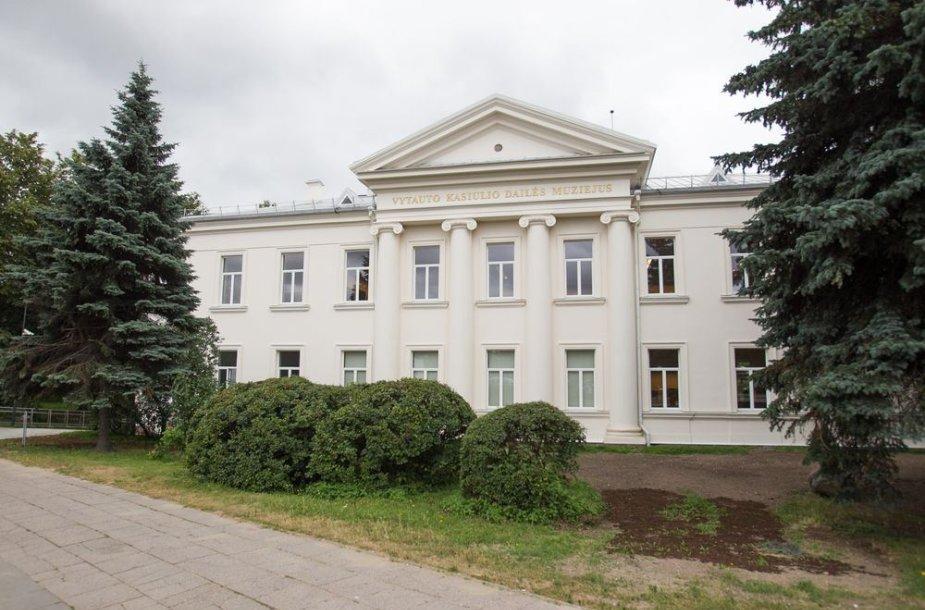Vytauto Kasiulio dailės muziejuje