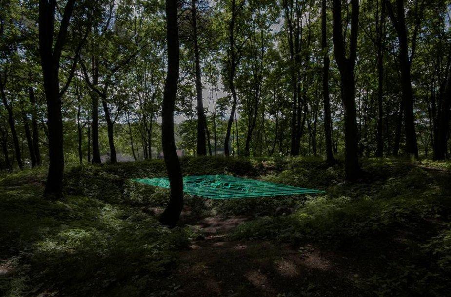 """Bjerkeset Andersen """"Carpet of Floating Dream"""""""