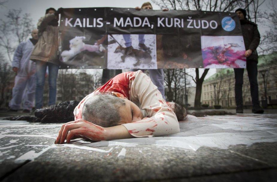 Protestuodama prieš kailių pramonės žiaurumą Milda paaukojo savo plaukus.