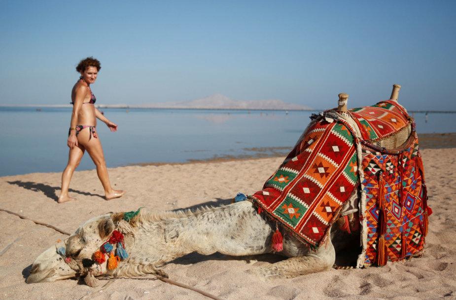 Turistai Egipte