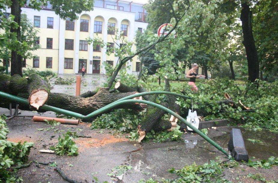 SimonoS. Dacho mokyklos kiemas. Čia su medžiu nuverstas ir elektros stulpas.