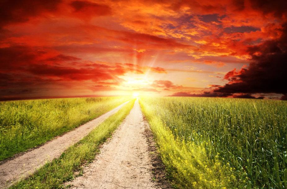 Kelias