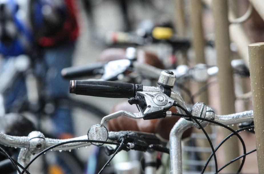 """Žygio """"Savu dviračiu į Europą 2013"""" dalyviai"""