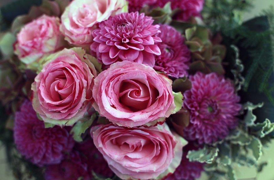 Jurginų ir rožių puokštė