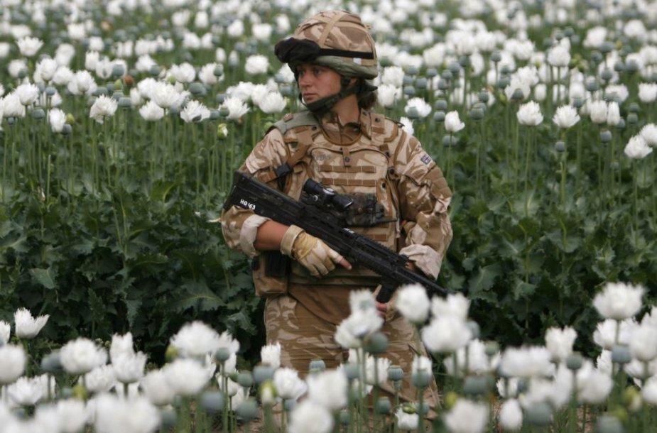 Britų karė Afganistane