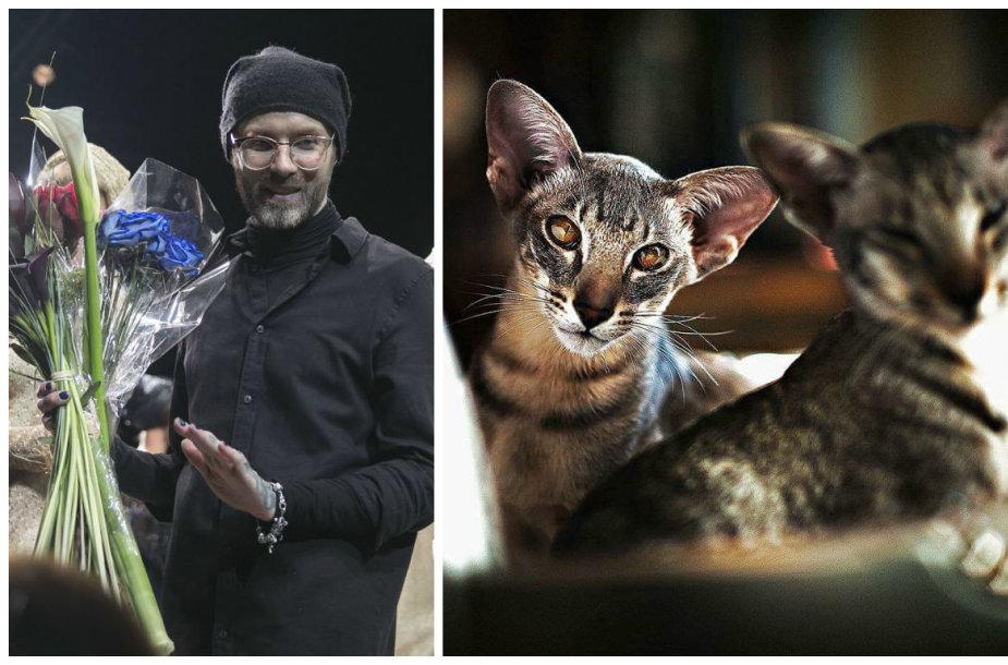 Liutauras Salasevičius ir jo katės