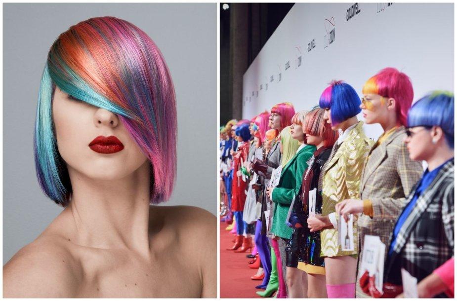 """""""Color Zoom 2019"""" konkurso įvaizdžiai"""