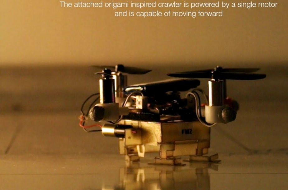 the-picobug-a-mesoscale-robot-that-can-run-fly-and-grasp