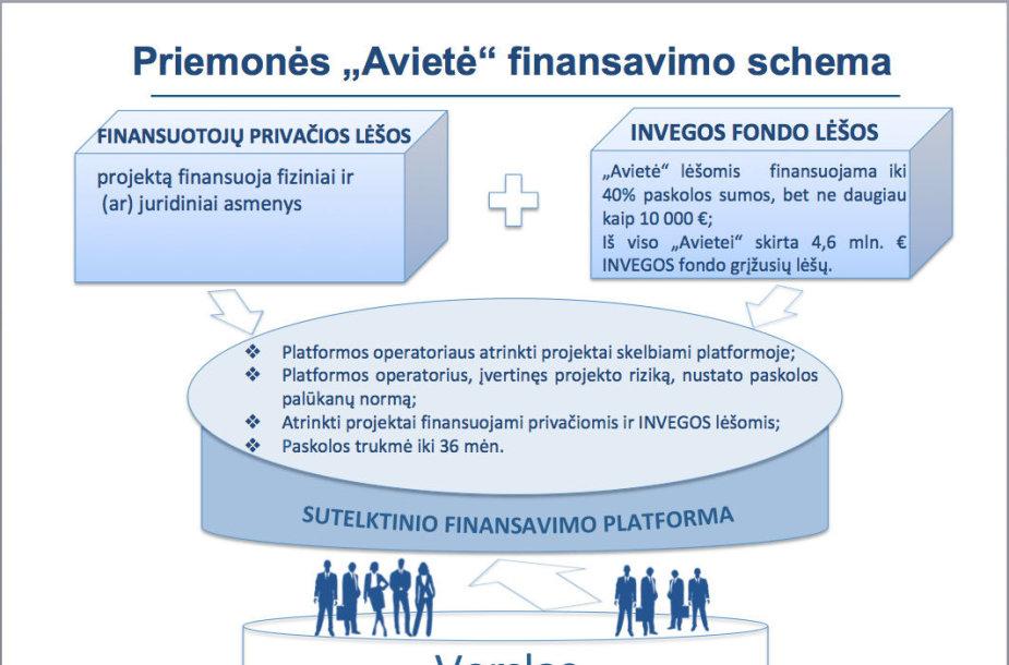 """Priemonė """"Avietė"""". Finansavimo schema"""