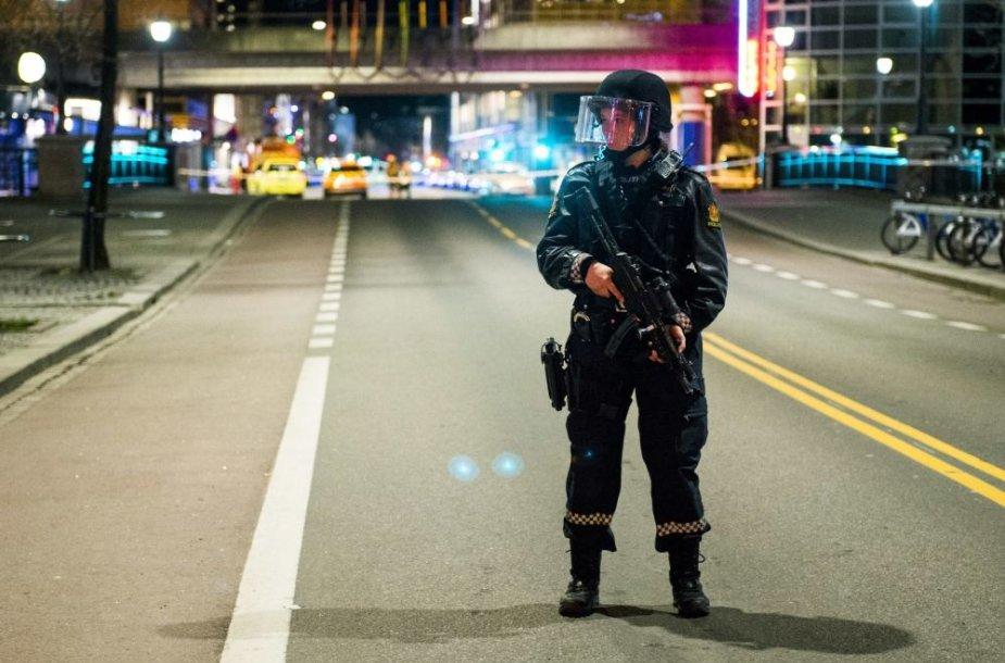 Norvegijos policijos pareigūnė