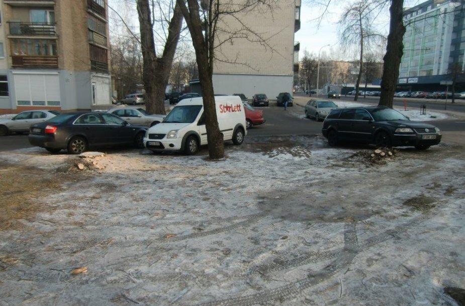 Vietoj medžių stovi mašinos viename Antakalnio g. kieme