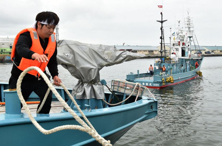 Japonų žvejai pirmadienį pirmą kartą per daugiau nei tris dešimtmečius išplaukė į komercines banginių medžiokles