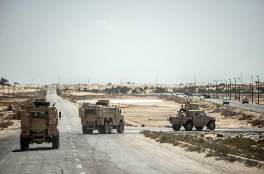 Egipto pajėgos Sinajaus pusiasalyje