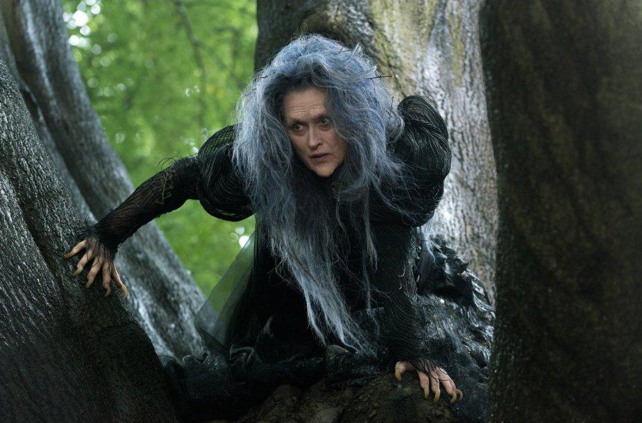 """Meryl Streep filme """"Gilyn į mišką"""""""