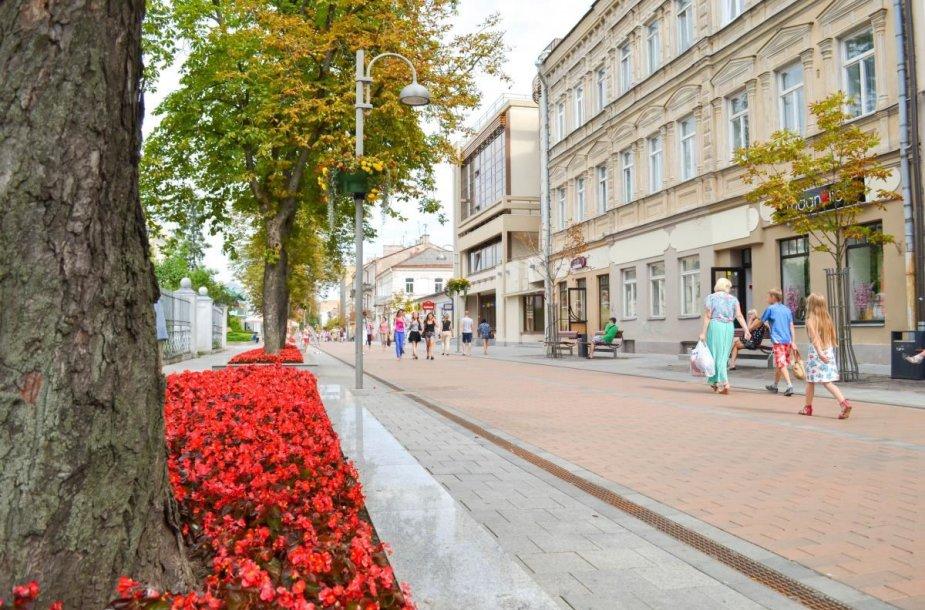 Rygos gatvė