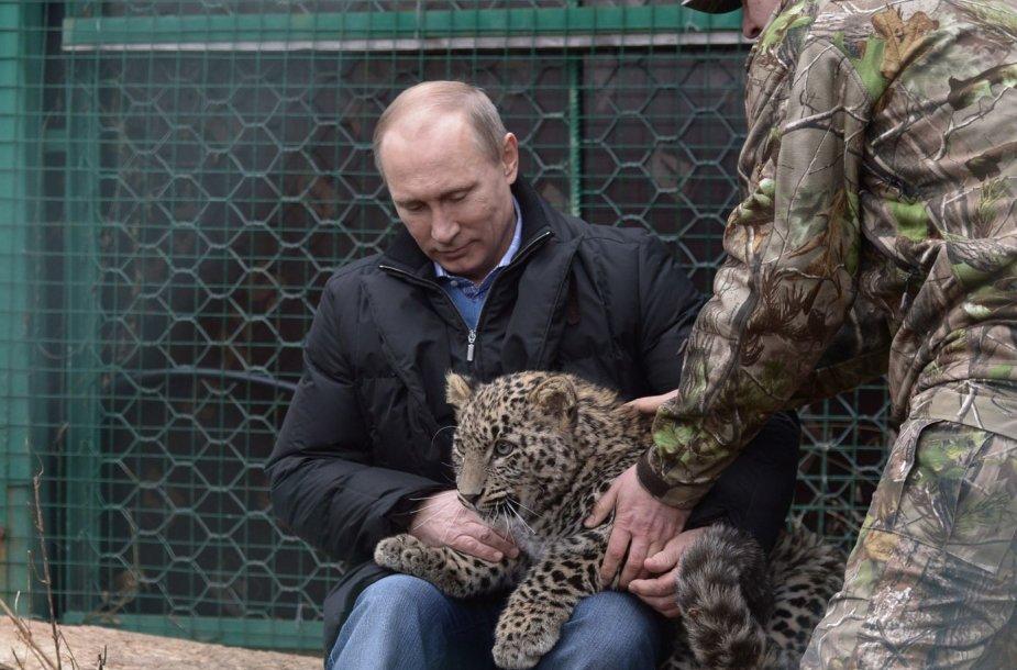 Vladimiras Putinas su leopardu