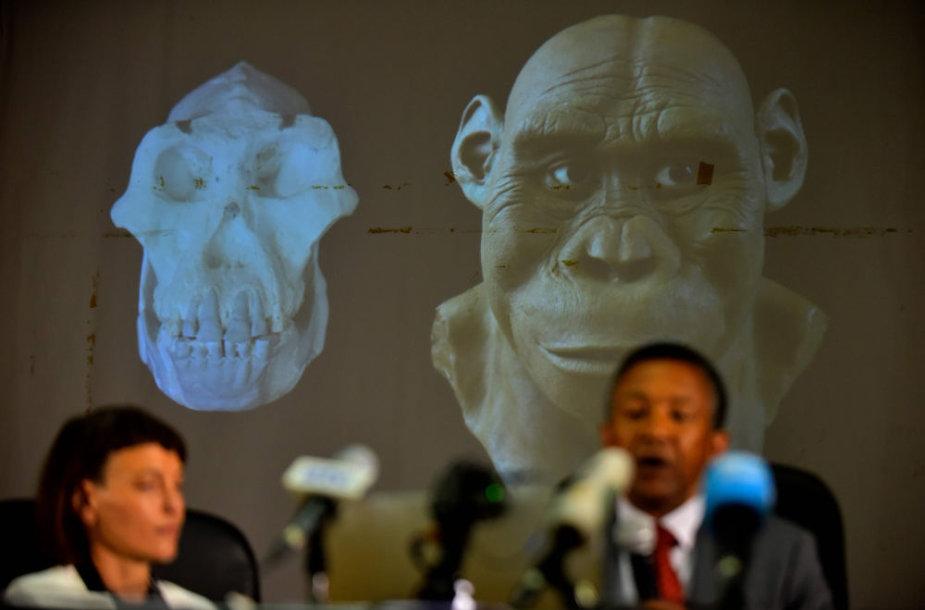 Y. Haile-Selassie pasakojo apie kaukolę