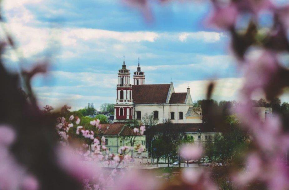 Marija Šadurskaitė Šv. Jokūbo Fotokonkursas I vieta