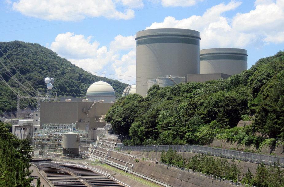 Takahamos atominė elektrinė