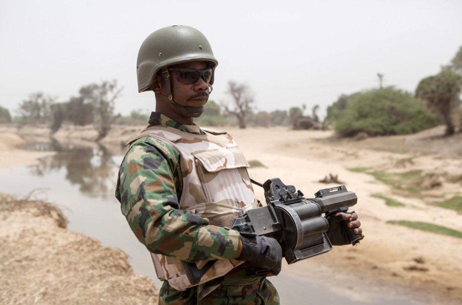 Nigerijos karys