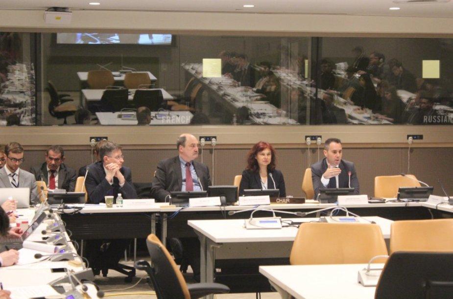 Raimonda Murmokaitė (antra iš dešinės) Jungtinėse Tautose