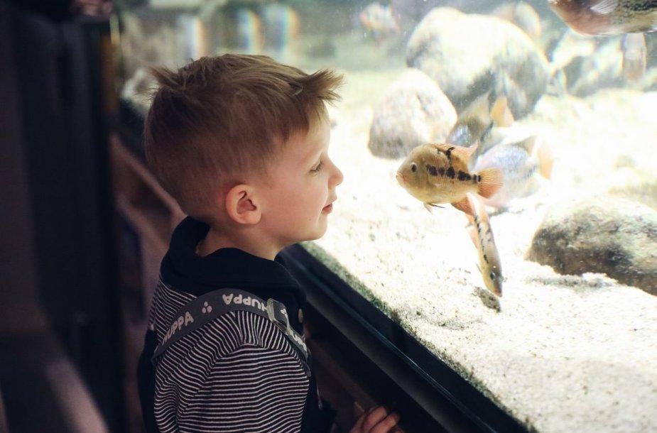 Netradicinio ugdymo galimybės – pamoka zoologijos sode