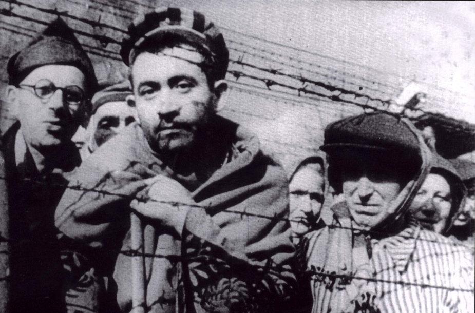 Kaliniai, išlaisvinti iš Aušvico koncentracijos stovyklos