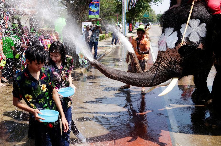 Tailandas dramblių vandens mūšiu pasitinka tradicinius Naujuosius metus