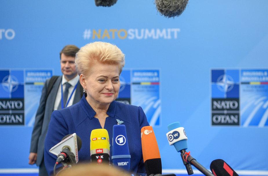 Dalia Grybauskaitė dalyvauja NATO viršūnių susitikime Briuselyje